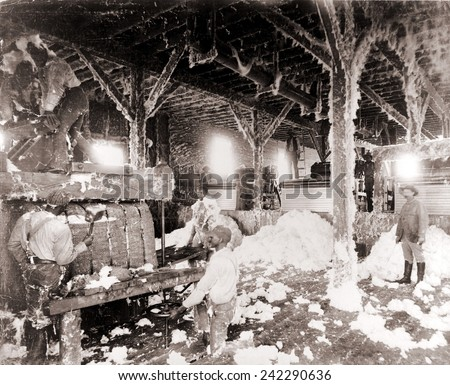 African American men working in a cotton gin at Dahomey, Mississippi, in 1898. - stock photo