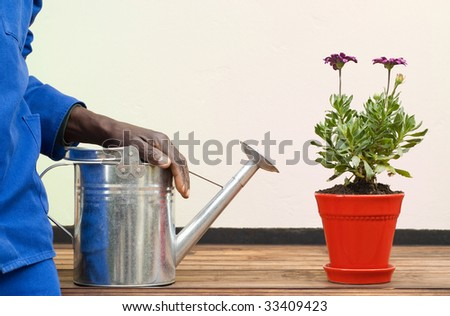 African American Resting Arm on Watering Can Next to Red Flowerpot - stock photo