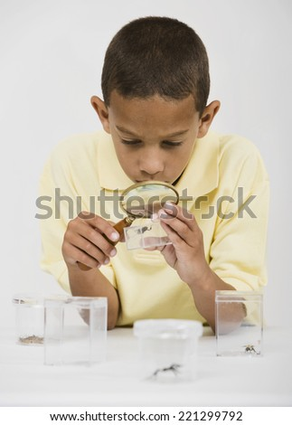 African boy looking at bug under magnifying glass - stock photo