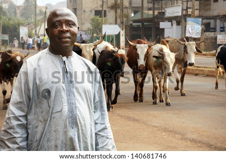 African cattle farmer or herdsman leading his herd of cows on a busy city street - stock photo