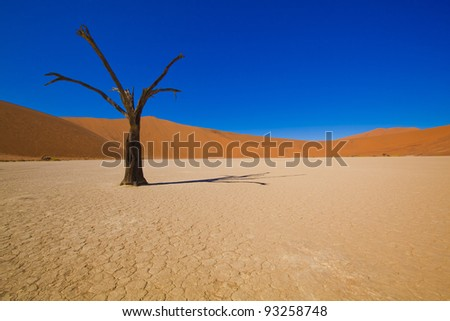 African desert - stock photo