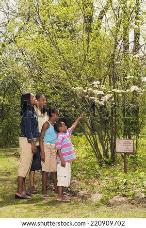 African family pointing at tree on nature trail - stock photo