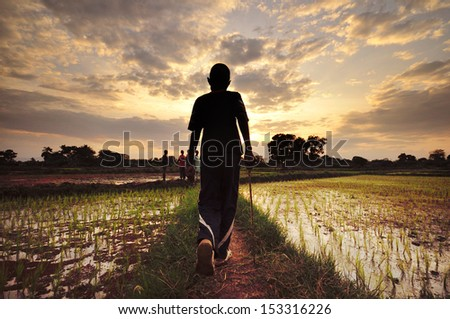 african kids  rice plantation - stock photo