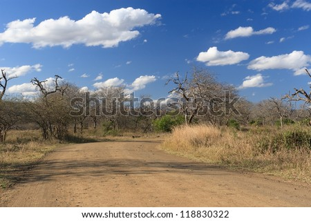 African landscape.  Dirt road in the African landscape. Hluhluwe/Imfolozi National Park in South Africa - stock photo