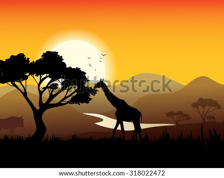 African landscape poster with acacia tree giraffe and sunset on background  illustration - stock photo