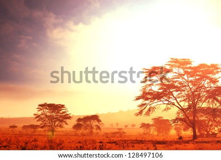 African sunrise landscape - stock photo