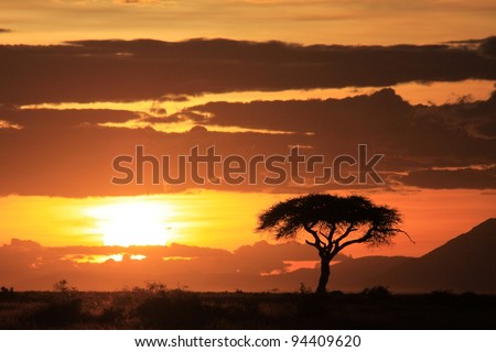 African sunset on the savanna plains - stock photo