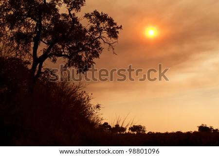 African sunset on the savanna plains - stock photo