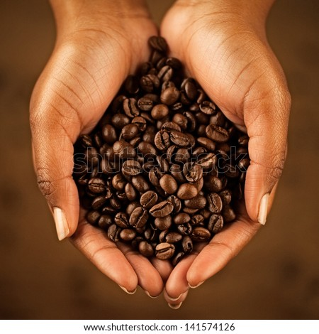 African woman's hands holding coffee beans. - stock photo