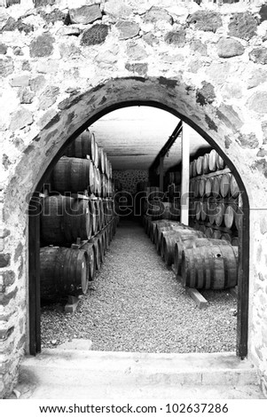 Agave tequila production - stock photo