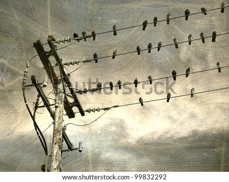 Aged Worn Vintage Photo Telephone Lines Stock Photo (Download Now ...