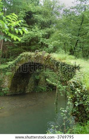 Aged Bridge and Tree with Vegatation. Leitzaran Valley, Navarra. Spain - stock photo