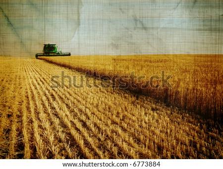 aged harvest background - stock photo