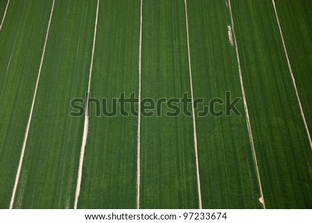 Agricultural Aerial of rows of crops in a farm field - stock photo