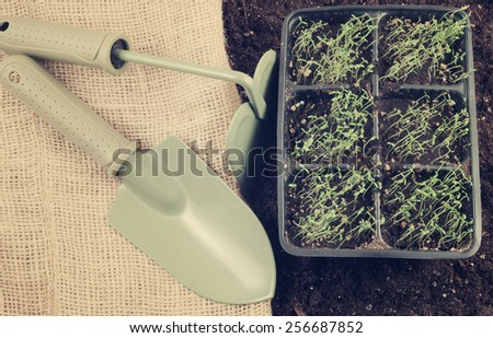 Agricultural and gardening concept, garden items and young plants with soil - stock photo