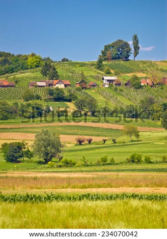 Agricultural countryside landscape vertical view in Prigorje county of Croatia - stock photo