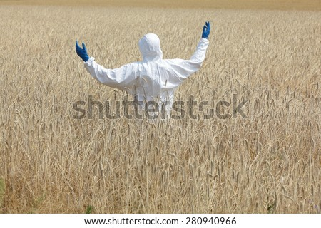 agricultural engineer on field of field of rye  back view - stock photo