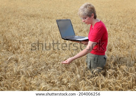 Agricultural expert inspecting quality of wheat, using laptop - stock photo