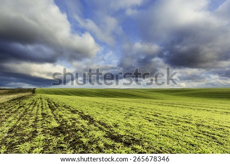 Agricultural field at the winter wind evening  - stock photo