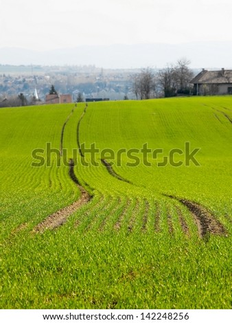 Agricultural filed with shallow DoF