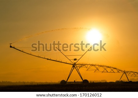 Agricultural irrigation system on the wheat field at sunset.  - stock photo