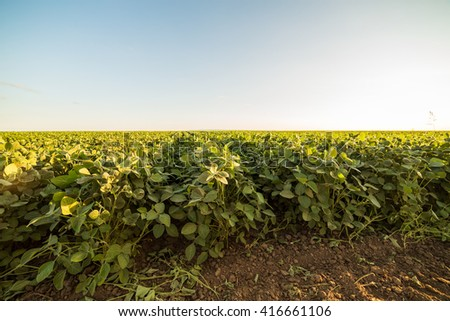 Agricultural landscape, arable crop field - stock photo