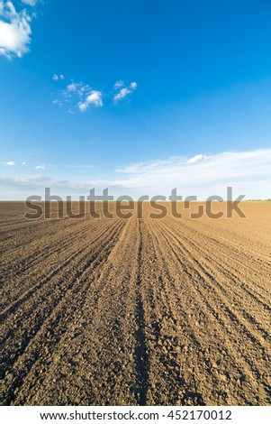 Agricultural landscape, arable crop field