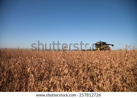Agricultural machine harvesting soybean field. - Mato Grosso State - Brazil - stock photo