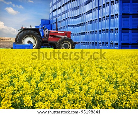 Agriculture business on farm, rape production distribution - stock photo