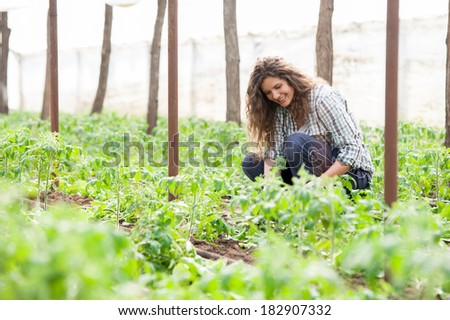 Agriculture farm woman worker - stock photo