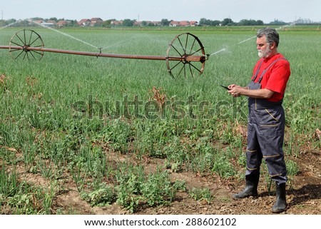 Agriculture, farmer  inspect onion field with irrigation system using  tablet - stock photo