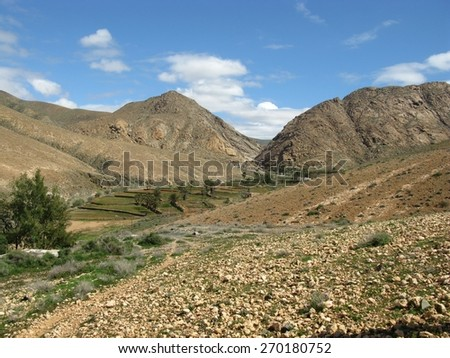 Agriculture in the Buen Paso valley on Fuerteventura. This Canary island belongs to Spain - stock photo