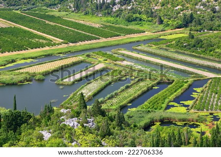 Agriculture land surrounded by water in the Neretva delta, Croatia