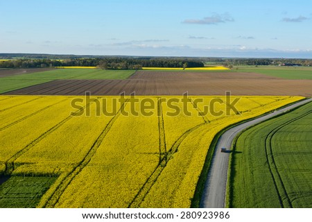 Agriculture land with flowering Canola flowers on the island of Gotland in Sweden, aerial view - stock photo