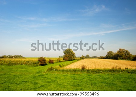 Agriculture landscape in Holland