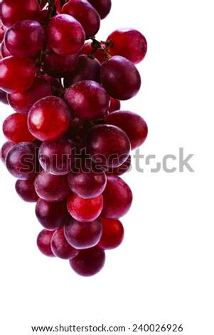 Agriculture wine red grapefruit on white background - stock photo
