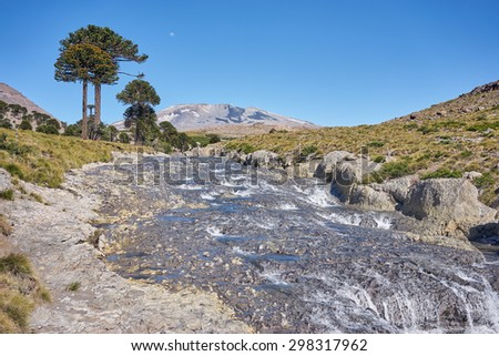 Agrio river, Patagonia, Neuquen. Land of dinosaurs. Provincial Park of Copahue. - stock photo