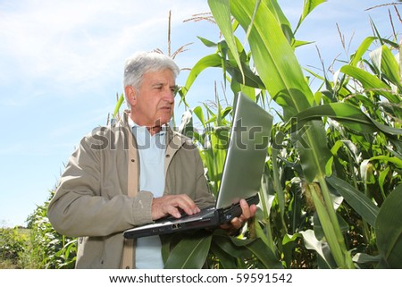 Agronomist in corn field with laptop computer - stock photo