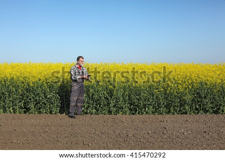 Agronomist or farmer examine blooming canola field, rapeseed plant, using tablet - stock photo