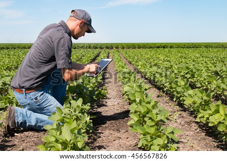 Agronomist Using a Tablet in an Agriculture Field