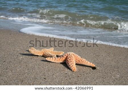 Ahh The Beach - stock photo