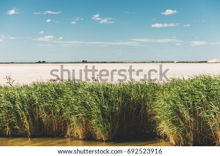 Aigues-Mortes, Salins du Midi, colorful landscape with salt marshes