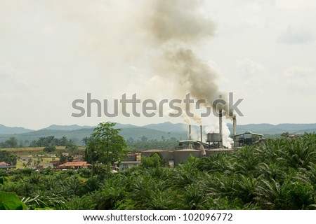 air pollution produced by the palm oil factory