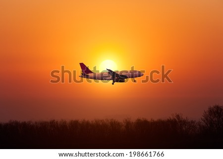 Airplane landing against the setting sun over the trees