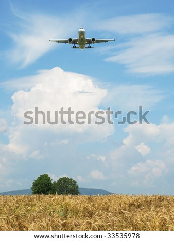 Airplane landing over a wheat field