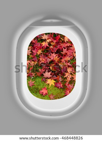 airplane window with autumn leafs