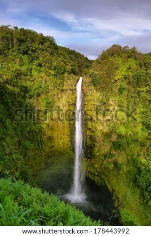 Akaka falls in east of Big Island, Hawaii - stock photo