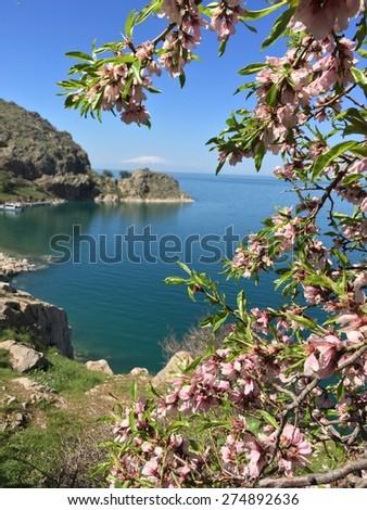 akdamar island in van lake, turkey - stock photo