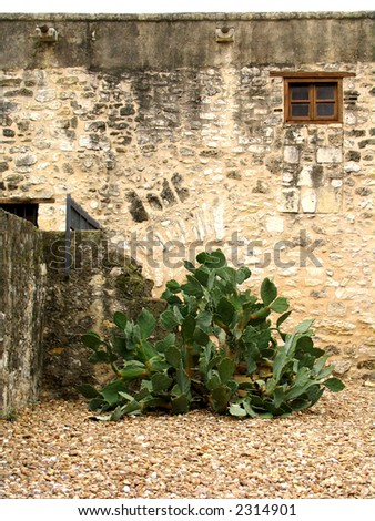 Alamo North Wall - stock photo