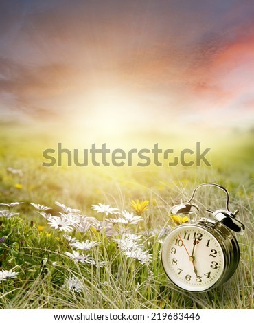 Alarm clock in sunlit spring field - stock photo